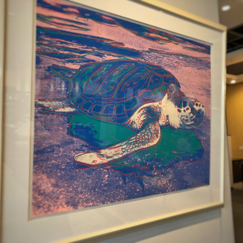 "Andy Warhol. ""Turtle"""